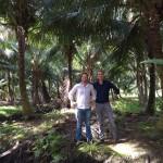 4-zo-trots-als-een-pauw-op-onze-plantage