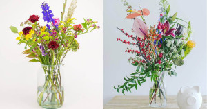 bloemen - blommen & flower-up